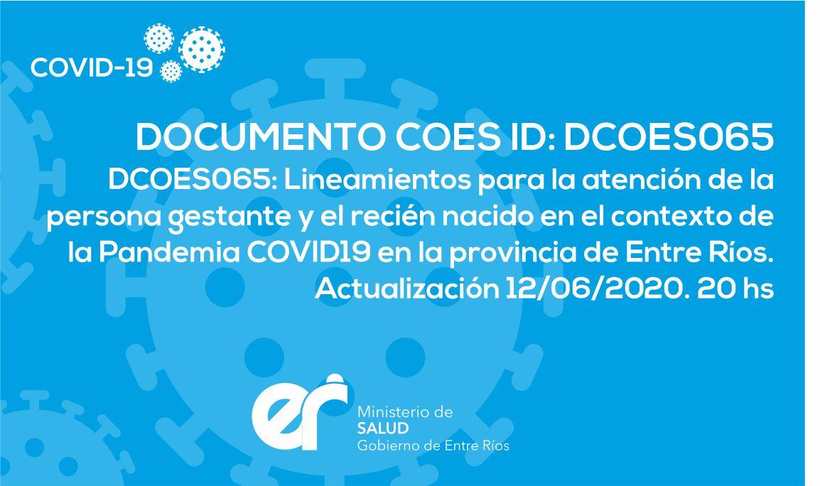 DCOES065: Lineamientos para la atención de la persona gestante y el recién nacido en el contexto de la Pandemia COVID19 en la provincia de Entre Ríos. Actualización 12/06/2020. 20 hs
